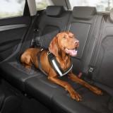 Принадлежности для собак Audi A1 (2011-2014)